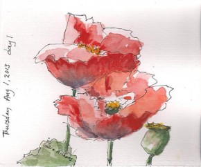 A pair of poppies