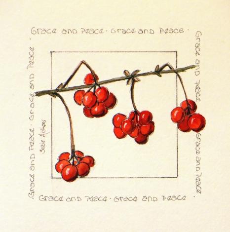 Christmas Square berries